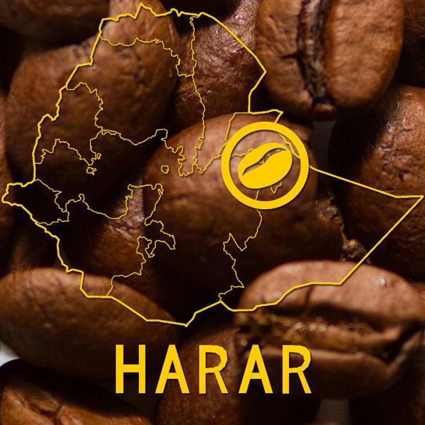 Harar Koffiebonen